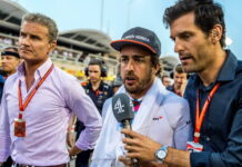 David Coulthard, Fernando Alonso, Mark Webber